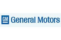 GENERAL MOTORS INDIA LTD